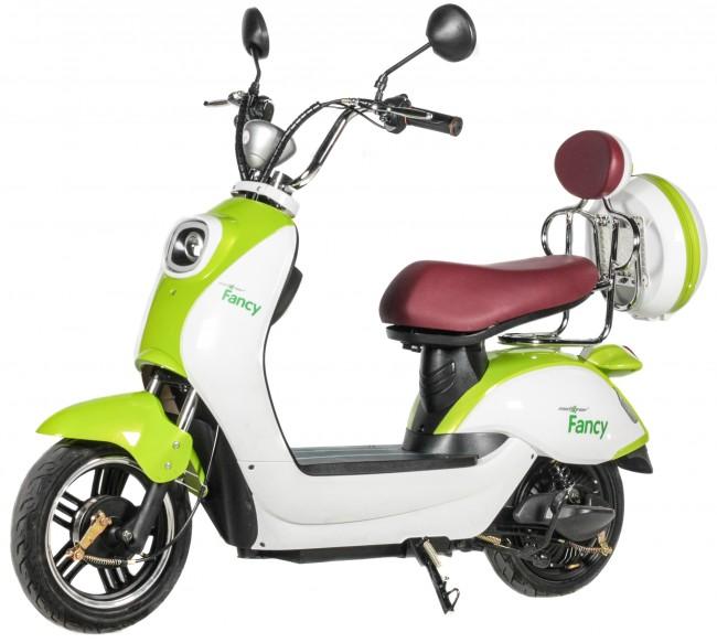 MAXXTER FANCY Green-White